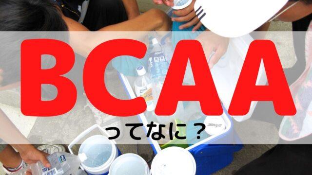 BCAAってなに?分岐鎖アミノ酸とは
